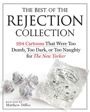 pic of rejection collection book cover